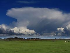 Driehuizen,  Eilandspolder (Ger Veuger) Tags: landschap landscape noordholland noordhollandslandschap dutchlandscape driehuizen eilandspolder weer weather wolken clouds wolkenlucht