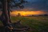 Spring afternoon in Alykes! (AdithetoS) Tags: adithetoscom spring alikes nature ουρανόσ σύννεφα δέντρα trees island sky greece nikkor nikond800 φύση adithetos landscape sunset μελουργόσ δωδεκάνησα ελλάδα clouds sun hellas νησί kos ήλιοσ τοπίο ηλιοβασίλεμα κωσ nikon dodekanisa άνοιξη αλυκέσ egeo gr