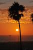 Santa Monica Sunset (Giulia La Torre) Tags: los angeles losangeles santa monica santamonica venice beach venicebeach california californian american cliche america spiaggia baywatch usa unitedstates unitedstatesofamerica states travel travelling traveler