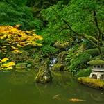 Portland Japanese Garden 4413 C thumbnail