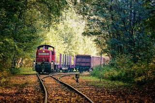Güterzug im Herbststimmung 🍂🍁  🚂