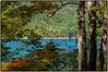 Through the trees (Steve4343) Tags: nikon d70s steve4343 lake watauga through trees cherokee national forest appalachian trail yellow green red orange woods pond stream river blue