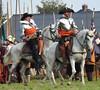 Slag om Grolle met de paarden (Truus) Tags: groenlo grolle paarden horses