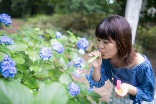 Young woman blowing soap bubbles in hydrangea field
