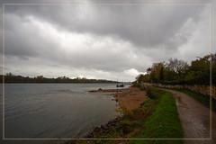 2017 10 22 Eltville Leinpfad A6000 - 17 (Mister-Mastro) Tags: eltville rhein rhine ufer banks regen rain steine stones boat boot schiff burg