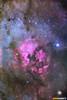 Nebulosa Norteamerica y Deneb (StarryEarth) Tags: galactica nebulosa nebula norteamerica not america star estrella cygnus swan cisne cumulo cluster emission emisión deneb