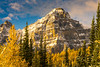 Mount Tuzo Morning Light Fall Colors (www.mikereidphotography.com) Tags: larches fallcolors autumn canada canadianrockies lakemoraine larchvalley sentinelpass 85mm otus zeiss mirrorless a7r2 landscape golden