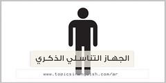 http://topicsinenglish.com/ar/?p=5148 (topicsinenglish) Tags: httptopicsinenglishcomarp5148 الجهاز التناسلي الذكري عربي انجليزي male genital system ، تركيب وظيفة للرجل امراض وما هى الامراض التى تنتقل عن طريق العلاقة الجنسية بين الرجل والمرأة عند اصابة احدهم بمرض معدى كل هذه النقاط سنتكلم عنها فى هذا المقال بشىء من التوضيح البسيط و المختصر لانه يدخل تحت الثقافة الصحية العامة يجب ان يعرفها الجميع وسيكون ذلك بالانجليزي والعربى
