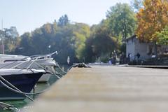 La vie de ponton (S. Torres) Tags: ponton boat bateau rope fall automne corde knot noeud yvoire hautesavoie leman lac lake france