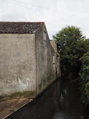 Aging Banksy (JULZTphotography) Tags: river swan lymeregis banksy graffiti streetart