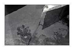 di bolina ;/) (schyter) Tags: фэд2 fed 2c jupiter8 silver 1958 lens film pellicola kodak tmax400 320iso рапри э201 rapri e201 spotmeter extintion development adox adonal 150 20 °c homemade scanned epson v600 analogica analogic bw bn bianconero blackwithe 135 35mm homemadescanned allaperto lodigiano lodi analogicait monocromo surreale bianco nero sovietcamera rangefinder fiume acqua adda prua foglia catena ancora parco