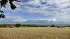 Sommer - Rückblick (Don Bello Photography) Tags: sommer 2017 ærø inselærø dänemark scandinavien himmelsbilder himmel wolken sky clouds feld weite panorama ostsee balticsea kornfeld acdsee fz1000 panasonicfz1000 lumixfz1000 reinhardbellmann donbello donbellophotography