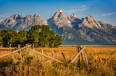 Sometime in the Morning (Sky Noir) Tags: scenic teton park grand national spectacular travel trip vacation mountain grass sky tree landscape wyoming jackson hole valley summer morning tetons