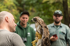 Raptor release! (Dotsy McCurly) Tags: raptor bird release nj newjersey park rangers nature beautiful nikond750 tamron18400mmf3563 people bokeh