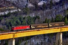 060EA(461-017) with short freight in Zlatibor(Ribnica 1) (Dusan Railfan) Tags: ribnica zlatibor railway trainspotting