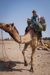 Rajasthan - Jaisalmer - Desert Safari with Camels-22