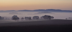 sunrise (Uli He - Fotofee) Tags: ulrike ulrikehe uli ulihe ulrikehergert hergert nikon nikond90 fotofee plätzer burghaun nebel morgen morgenlicht