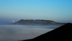 Mountain in a sea of mist (david_m.hn) Tags: landschaft landscape berg mountain vineyard nebel mist fortress festung burg scheuerberg heilbronn badenwürttemberg deutschland germany