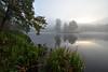 Quand la brume se lève au lever du soleil (Excalibur67) Tags: nikon d750 sigma 1224f4556iidghsm paysage landscape reflexion reflets eaux étangs brume brouillard mist fog levéedesoleil vosgesdunord nature forest foréts mountain montagne arbres trees