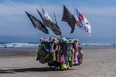 11072016-_DSC1623 (Paula Marina) Tags: beach brasil brazil bruma inverno litoral neblina nevoeiro névoa pg praiagrande winter