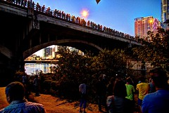 night view of Congress Bridge Bats (JoelDeluxe) Tags: congress bridge mexican freetail bats austin tx congressional session october 2017 joeldeluxe