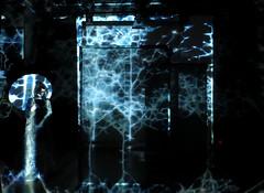 Creature (SDNA) Tags: digitalart videoart videodesign projections projection digitalmedia interactive immersive audiovisual installation performance dance sdna movingimageart imaginary creature