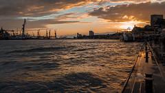 Hamburg sundown (lensflare82) Tags: sunset sonnenuntergang hamburg autumn atmosphere atmosphäre sonne sun clouds wolken sky himmel cityscape urban panorama wasser hafen port landungsbrücken eos 700d canon shutterbug