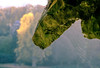 Grotto (The Green Album) Tags: cobweb spider rock grotto 260 years stourhead lake national trust trees autumn