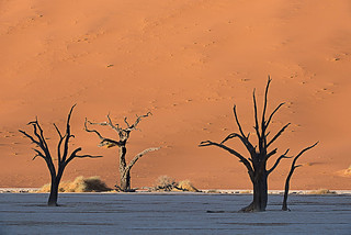 DeadVlei at Sunrise