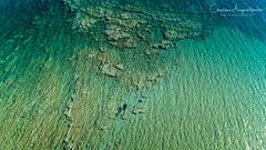 Into The Sea (Christophe_A) Tags: free diving aegean sea antiparos island cyclades drone phantom4pro christophe christopheanagnostopoulos christopheanagno wwwchristopheanagnocom polarpro filters aerial footage colorful polarizer