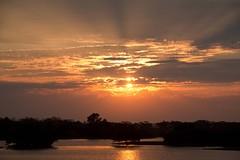 Morning sunrays (RubénRamosBlanco) Tags: naturaleza nature paisaje landscape amanecer sunrise sol sun nubes clouds rayos rays sunrays color selva jungle cecropia bosquetropicallluvioso tropicalrainforest amazonía amazonia catalao brasil brazil cheia