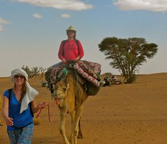 camel-ride-in-morocco (mohamedouassouibrahim) Tags: new years eve tours morocco
