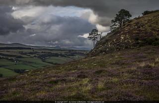 Knockfarrel Peak