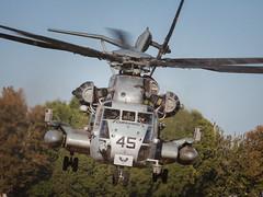 Condor in flight. (hotdog.aviation) Tags: