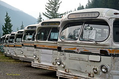 """The Trolleys Buses (joeinpenticton Thank you 1.6 Million + views) Tags: restored restoration road trip""""road trip""""ghost town towns canadian car foundry brill electric trolley bus trolleys sandon bc british columbia museum joeinpenticton joe jose garcia vancouver buses antique west retired kootenays kootenay front"""