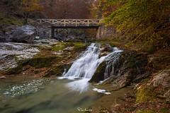 Early Autumn (Pablo Moreno Moral) Tags: early autumn otoño precoz waterfall cascada arripas arazas rio ordesa river nikon pirineos