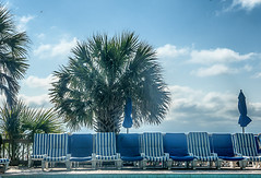 chasing_the_blues_away (gerhil) Tags: travel landscape scenic pool deck chairs umbrella tree sky clouds outdoor water ocean view autumn september2017 nikcolorefexpro4 palmetto 1001nights 1001nightsmagiccity
