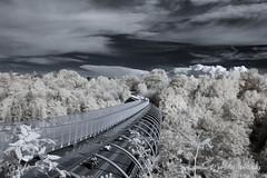 Infrared Bridge ... link for cloud animation below ... (gporada) Tags: infrared bridge animation cloudanimation nikon germany cityofstuttgart diy welltaken world100f ngc surreal dream travelling biking