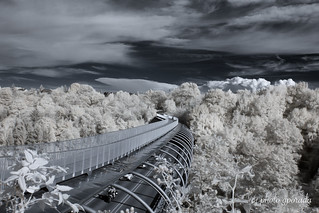 Infrared Bridge ... link for cloud animation below ...