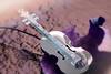 The sounds of autumn... (victoriameyo) Tags: violin purple violet macromondays instrument decorative macro leaf autumn still life memberschoicemusicalinstruments musical miniature letthesunshinein flickrfriday