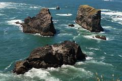 Hwy 101 CA-OR July 2018-34 (ntisocl) Tags: 2017 archrockviewpoint canon1dmarkiii canonef2470mmf28lusm hwy101 oregon oregoncoasthwy oregoncoast pacificnorthwest pacificocean coastline roadtrip rockybeach waves