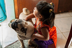 DSC_3113-12 (santi.gual) Tags: pug dog pet cute indian girl kid child children costume nikon d5000 yongnuo 35mm f2