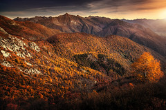 Cardada II (Chrisnaton) Tags: switzerland ticino cardada autumn autumnforest alps mountains mountainvalley eveningmood eveningsky sunset