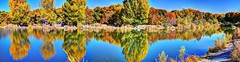 South Pond Tingley Beach (JoelDeluxe) Tags: albuquerque abq newmexico nm cottonwood reflections hdr panorama pondscape joeldeluxe