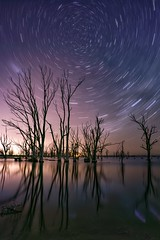 While the world goes round. (karinavera) Tags: longexposure night photography ilcea7m2 aisle buenosaires alone trazodeestrellas epecuen startrails tree batis sky stars