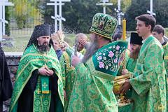 Преподобного Сергия (80)