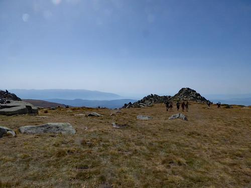 Mount Vitosha (5)