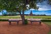 Shore temple, Mahabalipuram (Aravindan Ganesan) Tags: cwc mychennai chennaiweekendclickers shoretemplemahabalipuram mahabalipuram colors framing landscape landscapephotos temple unescoheritage canon600d canon