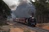 Dunolly (Dobpics O'Brien) Tags: engine rail railway railways train t356 locomotive n472 victorian victoria vr steam steamrail srv special farewell broadway wycheproof dunolly a2 a2986