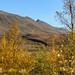 Autumn landscape (TerjeLM) Tags: autumn fall fottur hiking høst nonsbu trekking
